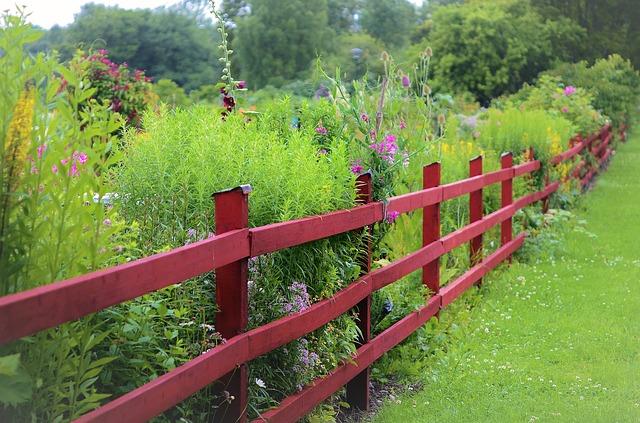 červený plot.jpg