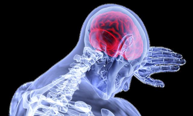 zánět mozku